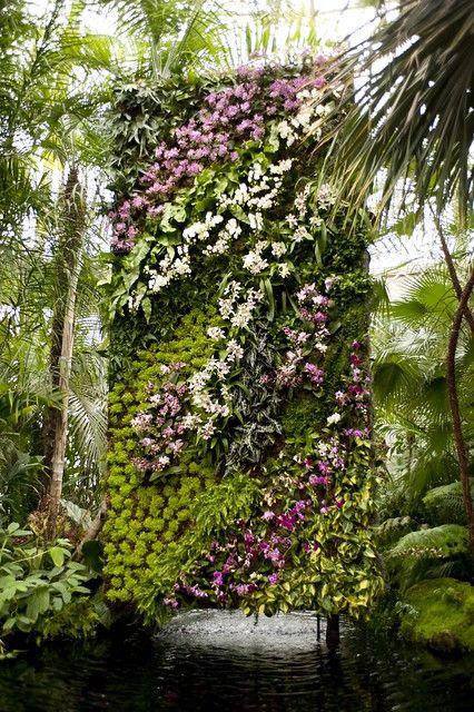 Jardinería Santander. Jardín vertical