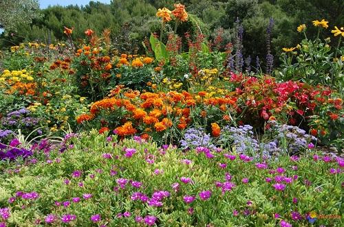Jardinería Santander Valladolid