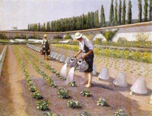 Empresa de Limpieza y Jardinería Santander Cantabria Valladolid